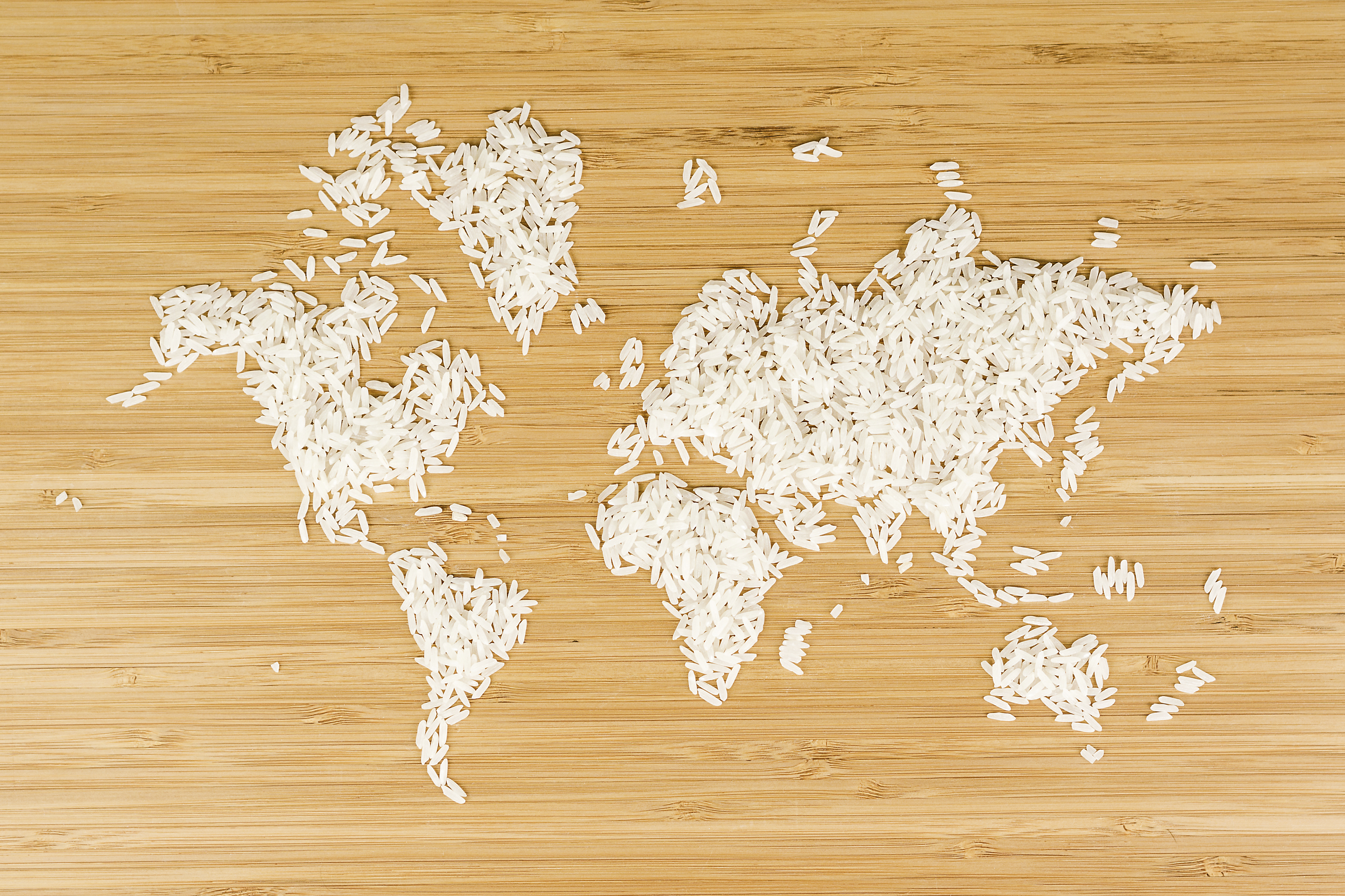 map of the world made of white rice 000079002509 Large 1